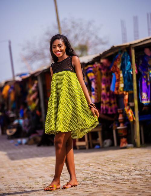 Sleeveless Lace and Print Dress